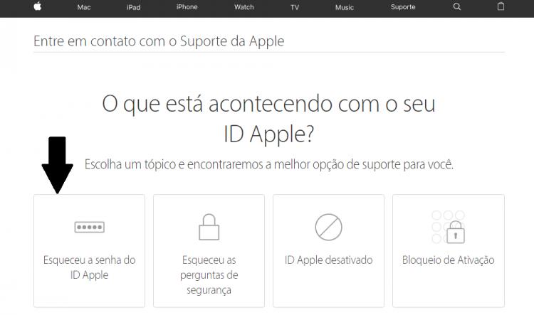 site suporte apple artigo